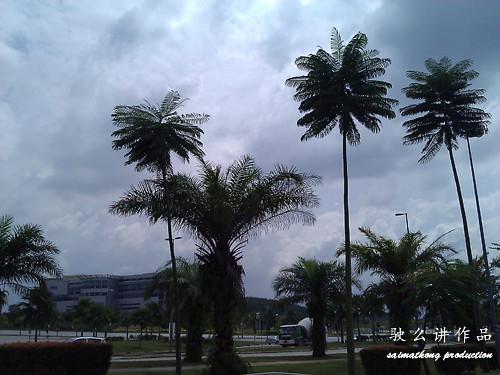 Photo taken using iPhone 4