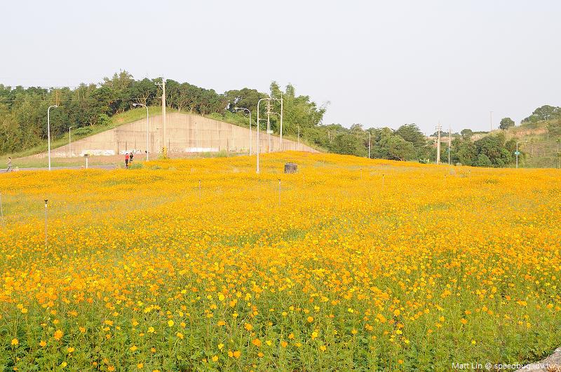 孔宅綠園 (20).jpg