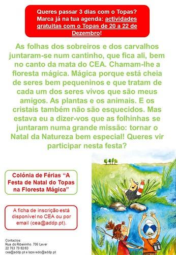 ColóniaFériasNatal2010