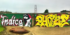 graffiti has no place on historical structures (pbo31) Tags: sanfrancisco california bridge color green yellow graffiti december view fort inappropriate over 101 goldengatebridge bayarea historical spraypaint stitched presidio hdr 2010 poortaste marked indica batterychamberlin chaez