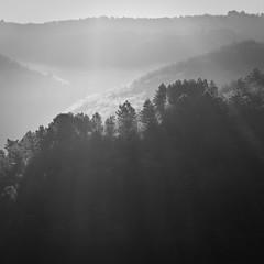 like a bird (Mathieu Calvet) Tags: blackandwhite nature landscape noiretblanc pentax lot paysage carr aficionados 77mm midipyrnes k10d pentaxk10d justpentax pentaxart pentaxfa77mmf18