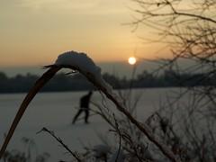Schaatser op het Paterswoldse meer