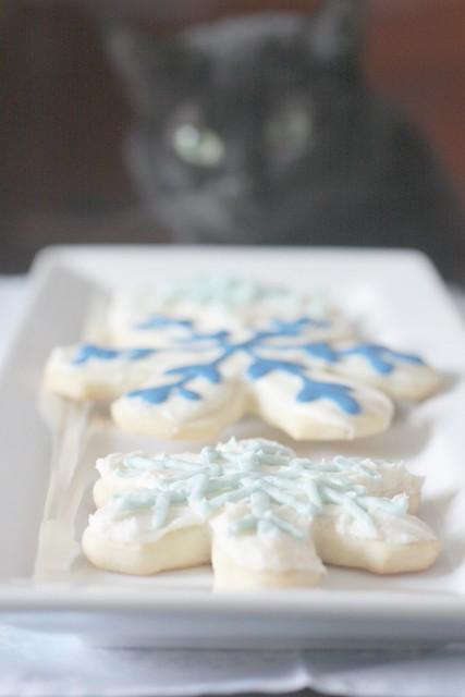 cookies & cat