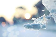 Nuvole di neve (mickiky) Tags: auto winter sun snow cold ice window car frozen bokeh neve sole inverno macchina freddo ghiaccio finestrino