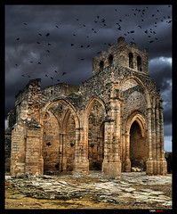 Swallows and gothic ruins. / Golondrinas y ruinas gticas. (OMA photo) Tags: espaa spain ruins gothic ruinas swallows golondrinas goticas palenzuela