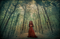 The Snow Queen (Mr Bultitude) Tags: park ireland winter red snow art fairytale forest dress mr path country dream meadows neil belfast queen crow northern carey wintery lagan bultitude fantasty