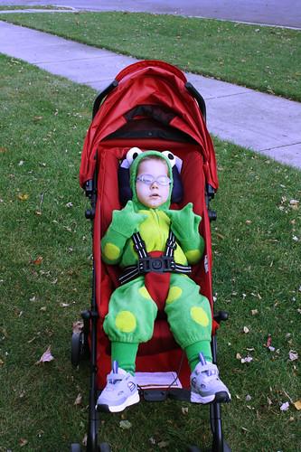20101031-frog-costume