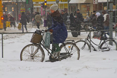 Snowstorm Shopping Transport