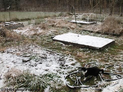 White Christmas Garden 3