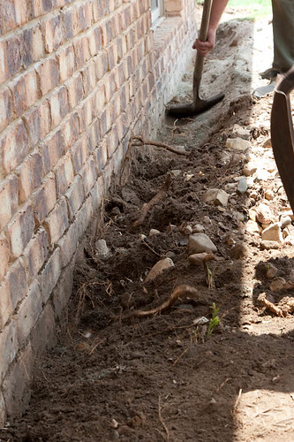 ReTerM Installation - Bad Soil - Tree Roots and Rocks