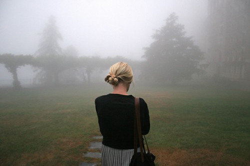 a walk in the fog