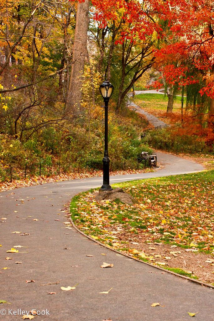 Central Park-5243.jpg