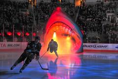 HP Pavilion - San Jose Sharks (buffalo_jbs01) Tags: hockey nhl nikon sanjose sharks hppavilion sabres iso12800 d3s