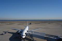 Haneda Terminal2