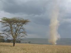 Dust devil in Nakuru