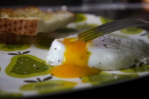 Fried Egg&  Buttered Sourdough Toast