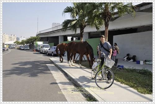 7真馬與鐵馬的第一類接觸
