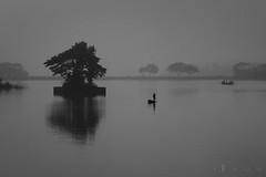 untitled... (mostakim timur) Tags: winter blackandwhite white mist black tree water silhouette misty fog canon landscape eos boat is kiss foggy monotone form noon 1855mm shape scape bangladesh efs bnw boatman x3 500d comilla f3556 t1i canoneoskissx3 mostakimtimur mdmoazzemmostakim