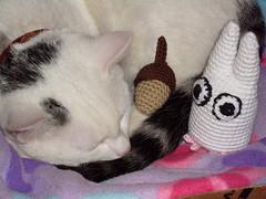 My Amigurumi Totoro (kuzco_cat) Tags: sleeping white cute cat self klein crochet made acorn totoro amigurumi igor tomcat eichel weis hkeln handarbeit ss