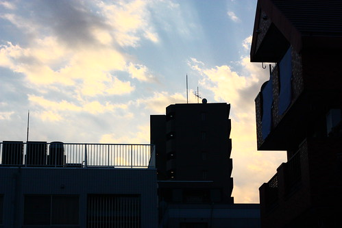 IMG_8944