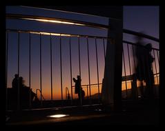End of Days (19:365) (anakiwa_forever) Tags: sunset shadow newzealand orange black silhouette long exposure purple dusk wellington 365 deeppurple mtvictoria 19365 msh0811 msh08114