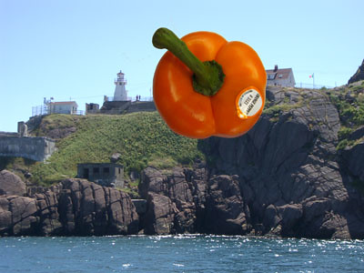 OrangePepper