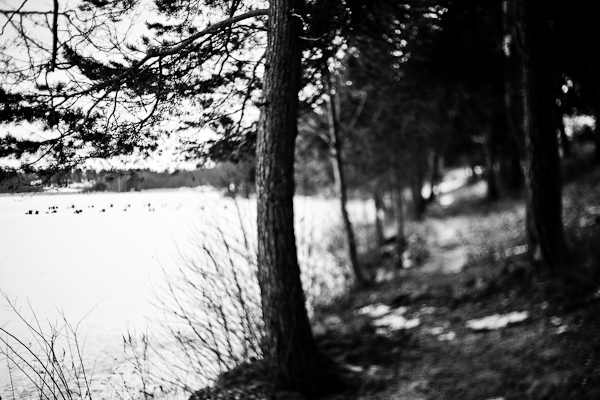 20110121_#03 Freelensing Sundbyholm