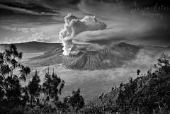 Bromo - B&W (Jesse Estes) Tags: indonesia mountbromo eastjava jesseestes jesseestesphotography