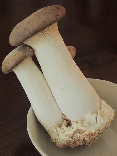 Stir- fried Eryngii mushroom