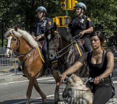 Park & Ride (1hr photo) Tags: newyork newyorkcity nyc centralpark manhatten