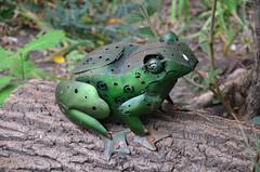 Ribbit (thoth1618) Tags: ny nyc newyork newyorkcity brooklyn metal green frog ribbit photooftheday