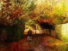 Sledmere, going shopping (Philip Ed) Tags: trees texture fence shopping streetlight path contemporaryart hedge oldlady colourful eastyorkshire sledmere yorkshirewolds awardtree philipedmondson