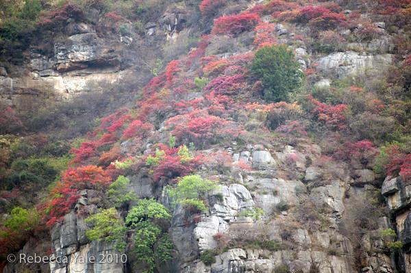 RYALE_Yangtze_Three_Gorges_11