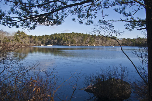 Frog Pond Halifax
