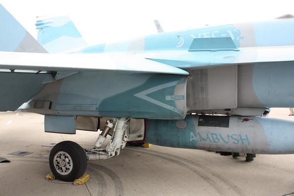 EAA10_FA-18C_109