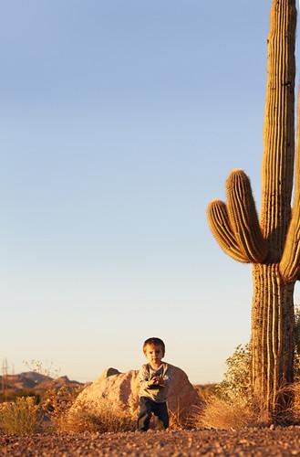 Arizona 1706