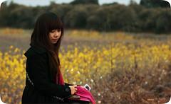 So Hee (wonder girls) come VietNam =)) (Oc†obεr•10) Tags: girls hot alex canon wonder flickr no ten gia groups hee hoa sohee tenten soten 50d lâm vàng mùa gạch cải mũm mĩm