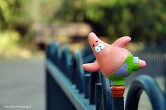 Happy Fence Friday! {Patrick edition} (Violet Kashi) Tags: pink fence photography star nikon comedy dof bokeh patrick explore animation frontpage spongebobsquarepants  nickelodeon hff d90 fencefriday