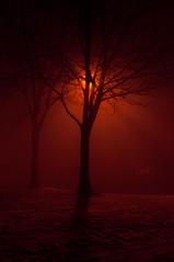 Foggy Evening (Paul Scott Thomas) Tags: fog wales night nikon foggy bleak badweather pontypridd d300 paulthomas nikond300 paulscottthomas