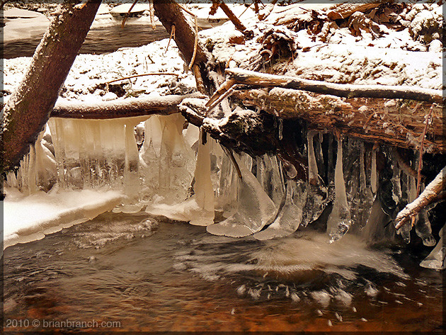 P1130058_brook_ice