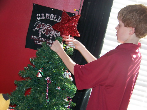 101127 Spencer putting tree up in his room 02