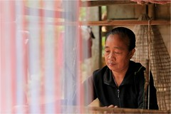 Laos: tissage dans le village Tai de Ban Sop Jam. (claude gourlay) Tags: portrait asia asie laos ethnic minority indochine tissage ethnie minorit sudestasiatique claudegourlay