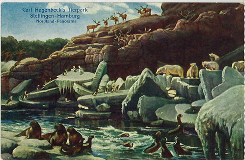 Carl Hagenbeck's Tierpark - postcard