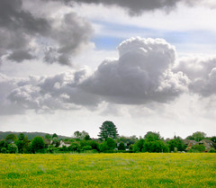 Cumulus clouds over Basingstoke Common (Beardy Vulcan) Tags: england sky field weather spring may hampshire cumulus common geotag parklane basingstoke 2010 buttercups ranunculusacris oldbasing loddonvalley basingstokecommon