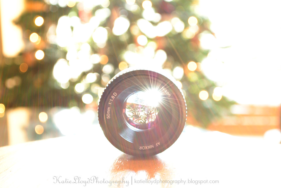 Tree-in-lens-with-sun-flare