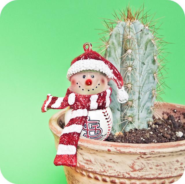 El cactus de Navidad