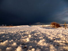Low perspective (flips99) Tags: road winter sky sunlight snow norway fence dark december low perspective himmel vei gjerde sn 2010 karmy mrk sollys perspektiv colorphotoaward lavt thechallengefactory canonpowershotsx200is