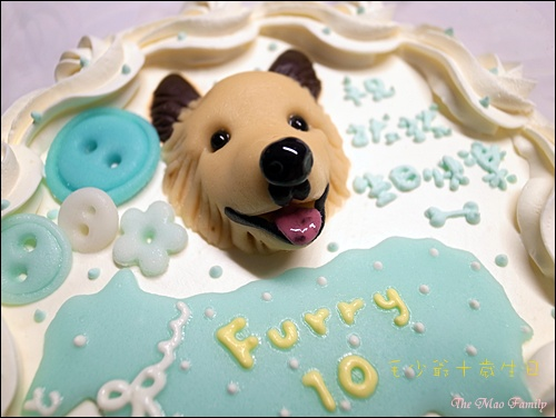 Furry's Birthday Cake