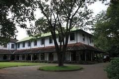 - Kandy, Peradeniya Botanical Gardens - (dcem) Tags: srilanka kandy peradeniya royalbotanicalgarden serendib ceylan 400d canonefs1855mm3556