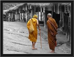 Monjes budistas ( Tailandia) / Buddhist Monks (Thailand) (cambiodeaires) Tags: cutout thailand religion tailandia buddhism thalande monks moines mnche bouddhisme budismo monjes poblado desaturado monaci dsatur platinumheartsaward a3b totallythailand